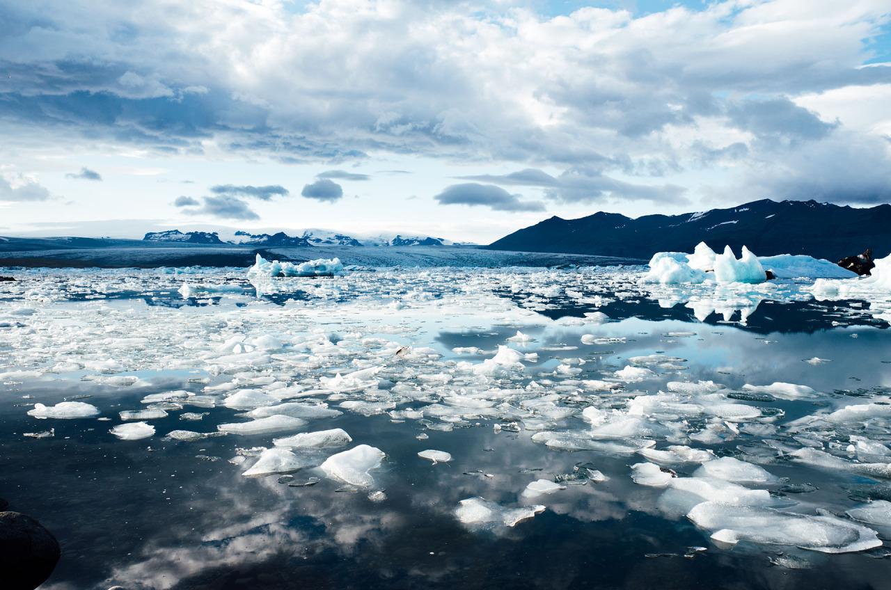Sprzedać lód Eskimosom